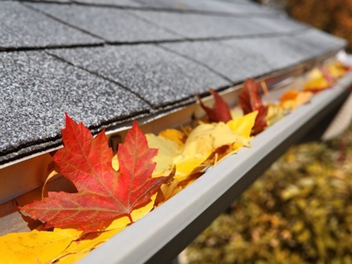 $25 for $50 Towards Gutter Cleaning