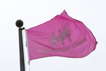 Breast_Cancer_Alliance_2015_-7