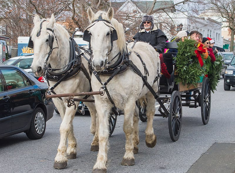Greenwich Holiday Happenings - Reindeer Festival, Santa's Workshop and Holiday Stroll