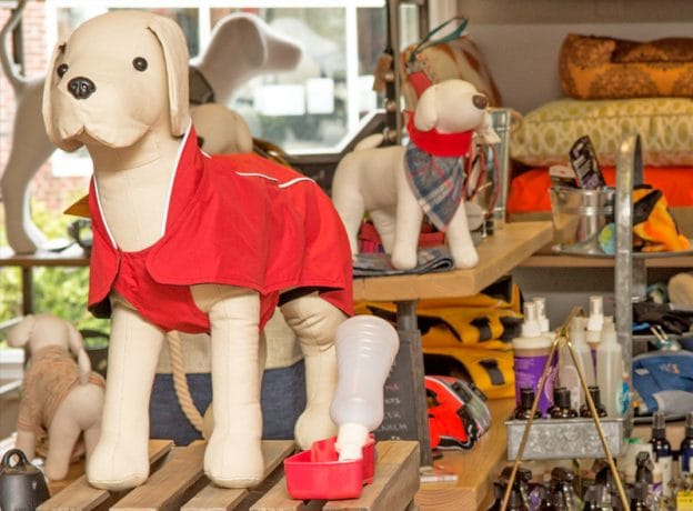 Q+A: Betsy Kaminski of Raleigh & Co. Fine Pet Goods in Greenwich