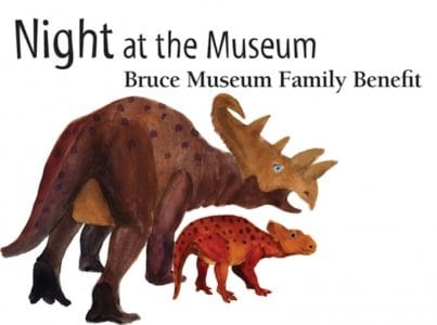 Night at the Museum - Bruce Museum Family Benefit