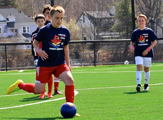 Cardinal Soccer Camps - Connecticut and New York