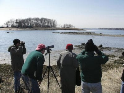 Birding Fieldtrip - Read Sanctuary and Marshlands Conservancy - Rye, NY