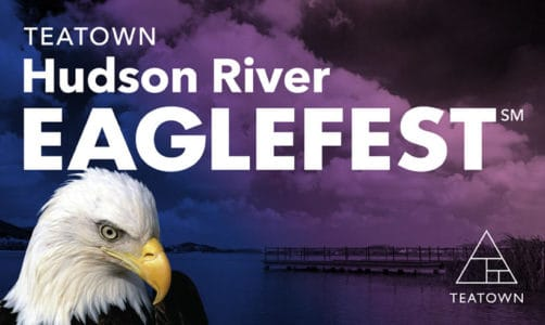 Teatown Hudson River EagleFest at Croton Point Park
