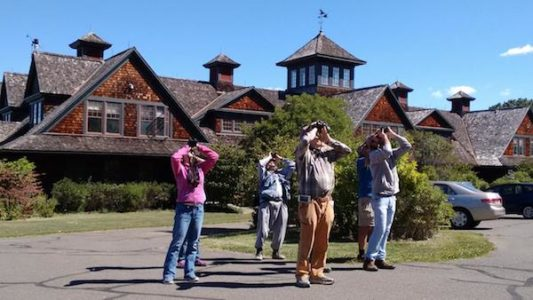 Spring Birding Class - Bird Watching Basics - Audubon Greenwich