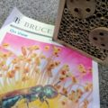 Science Sunday - Build a Bee House - Bruce Museum