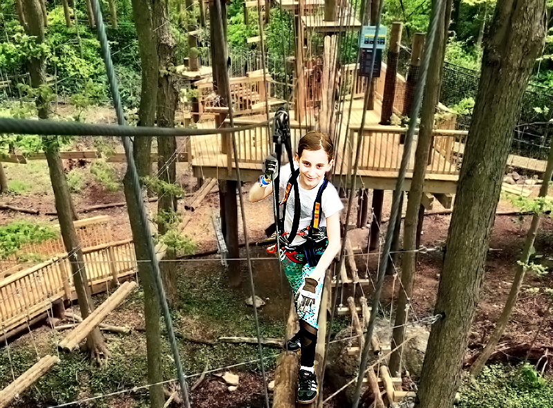 Summer Excitement: Boundless Adventures Aerial Adventure Park - Purchase, NY