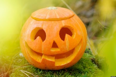 Pumpkin Carving Fun! Greenwich Library - For Students in Grades 5-8