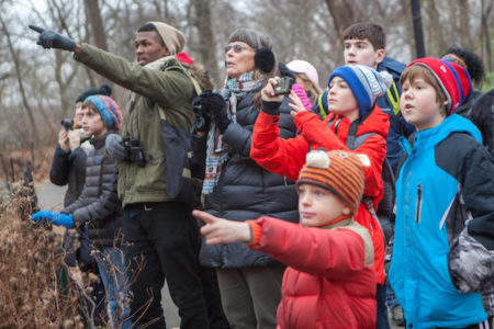 Greenwich-Stamford Christmas Bird Count - Audubon Greenwich