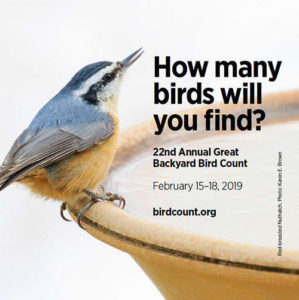 Great Backyard Bird Count Introductory Session at Greenwich Library