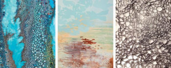 Opening Reception - 'Fluid Terrain' - Flinn Gallery at Greenwich Library