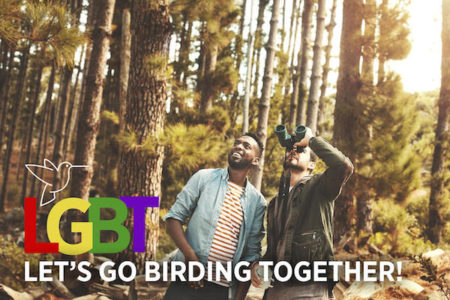 LGBT - Let's Go Birding Together - Audubon Greenwich