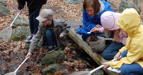 Outdoor Adventures - Stream Hunters - Stamford Museum and Nature Center
