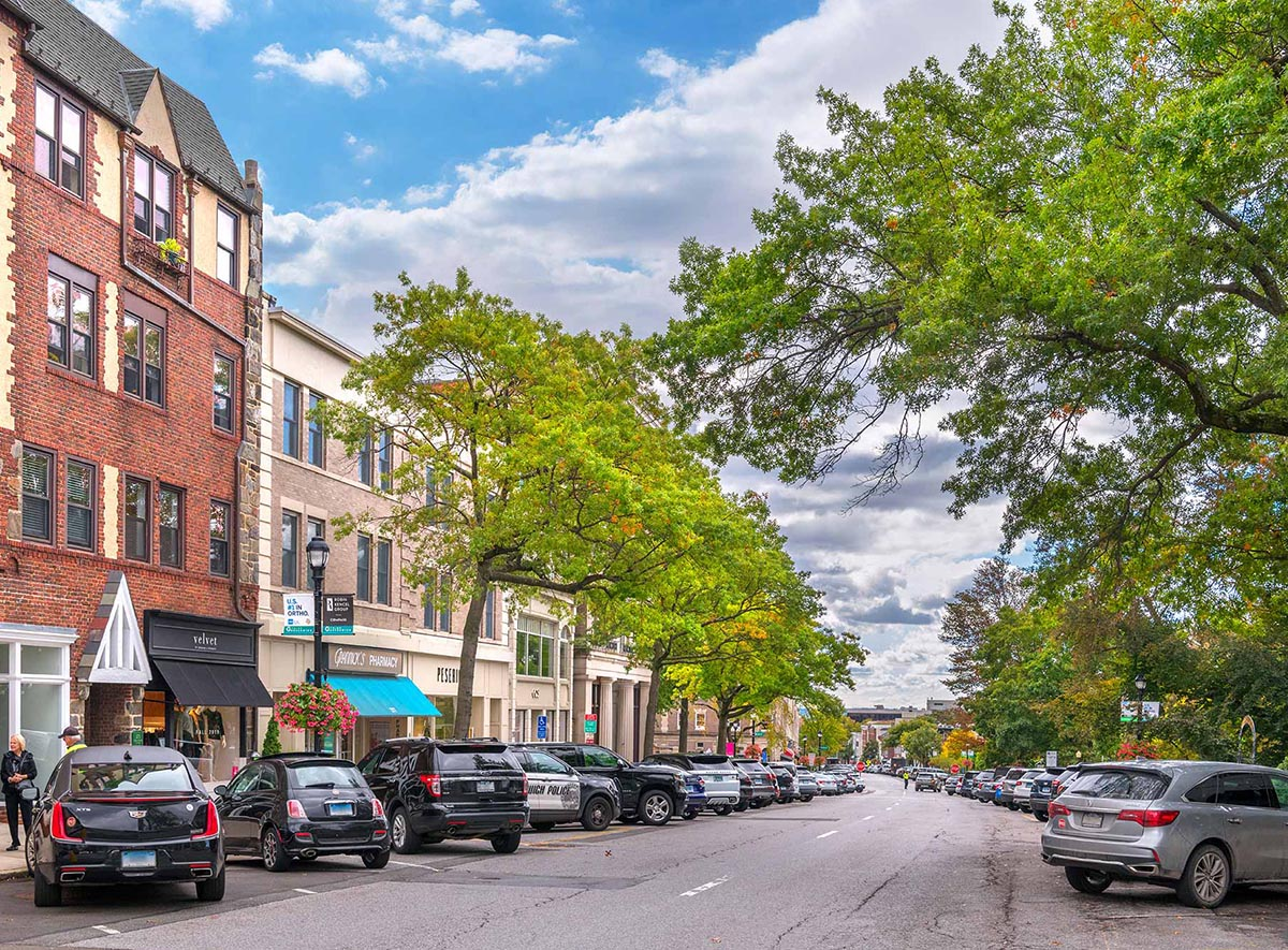 What's Your Opinion? Greenwich Avenue Streetscape Website Officially Launched for Public Feedback