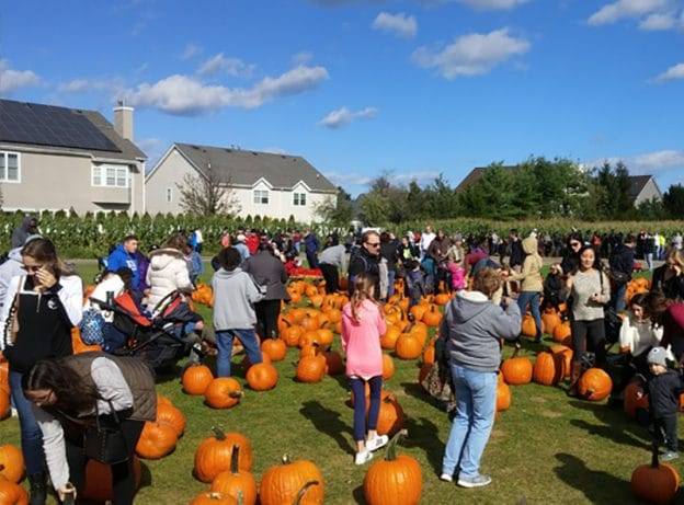 ESCAPES: Halloween Extravaganza at Schmitt Family's Farm in Melville.