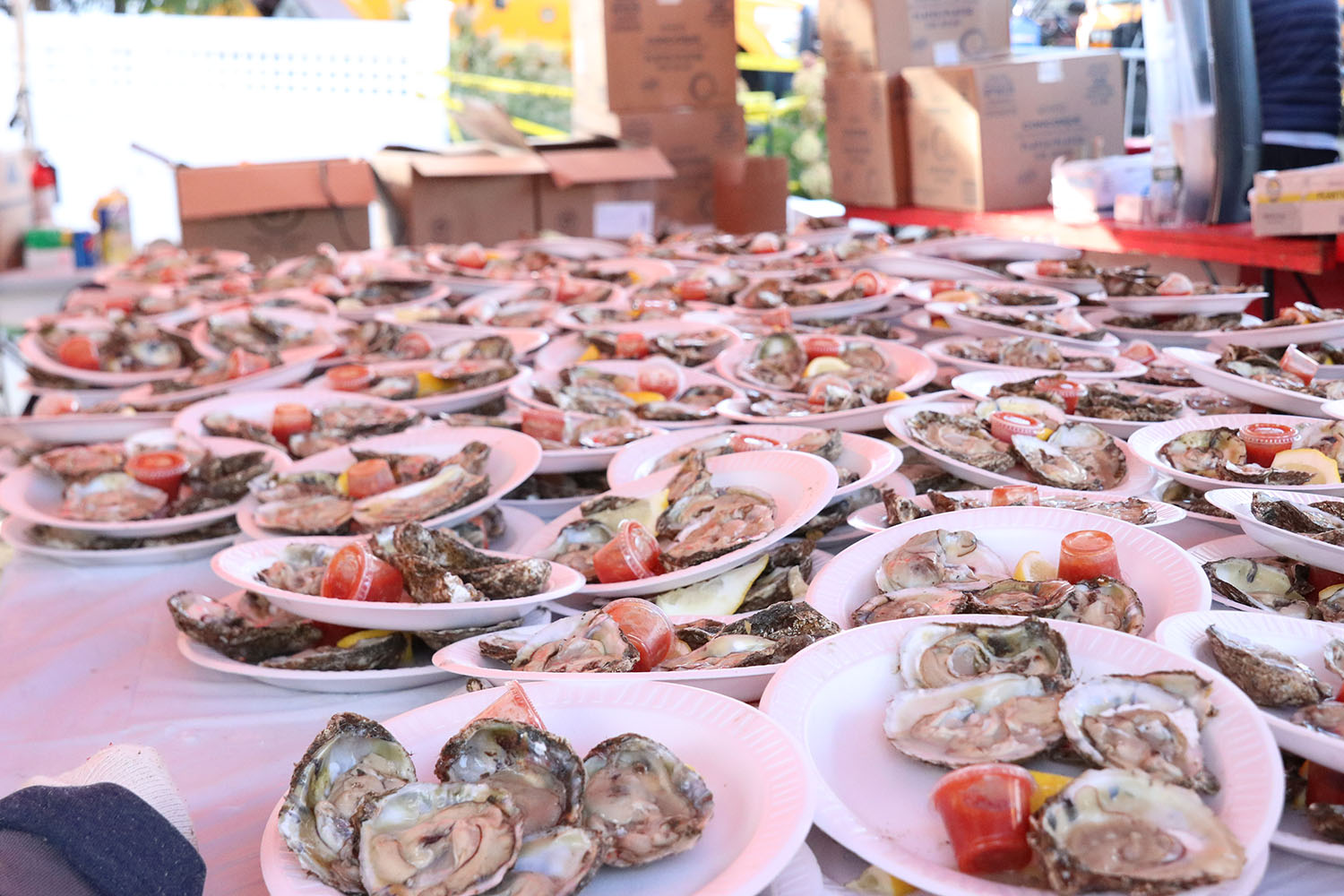 Photo Gallery: 35th Annual Oyster Festival in Oyster Bay