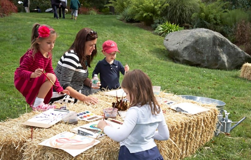 An Afternoon of Art and Nature - Frolic at French Farm 2015