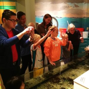 Science Sundays - Time in Our Marine Tank