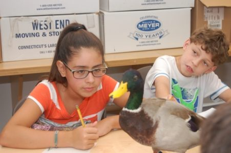 Art Adventures - Express Yourself at Bruce Museum