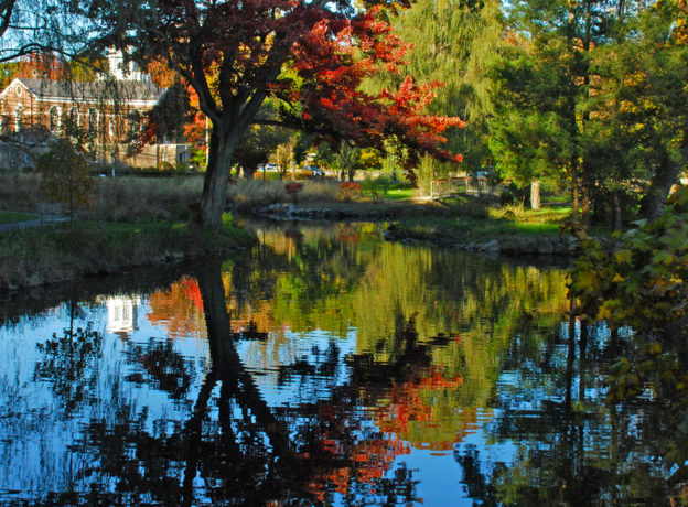 Reader-Submitted Photo Gallery - Autumn Foliage in (and around) Greenwich