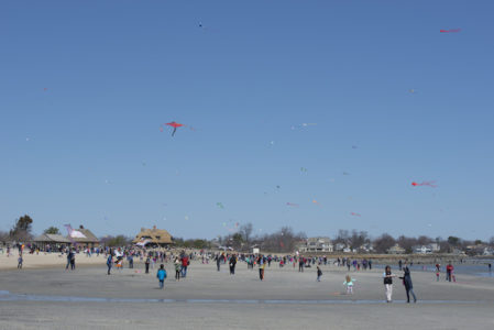 Kite Flying Festival - Greenwich Point