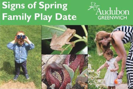 Signs of Spring Family Playdate - Audubon Greenwich