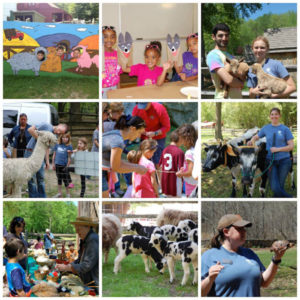 Farm Festival - Spring Fun For Everyone - Stamford Museum and Nature Center - June 8 and 9 - Rain or Shine