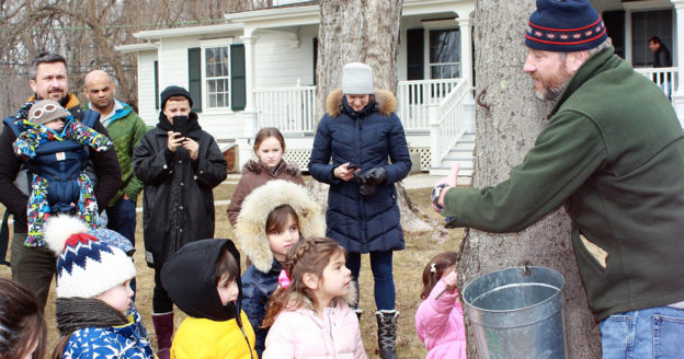 Maple Sugar Day - Greenwich Land Trust