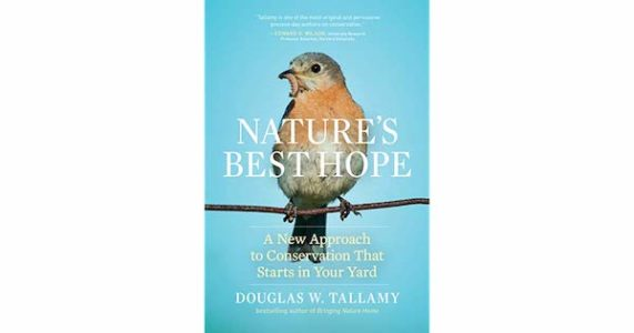 Nature's Best Hope - An Evening with Doug Tallamy - Greenwich Botanical Center