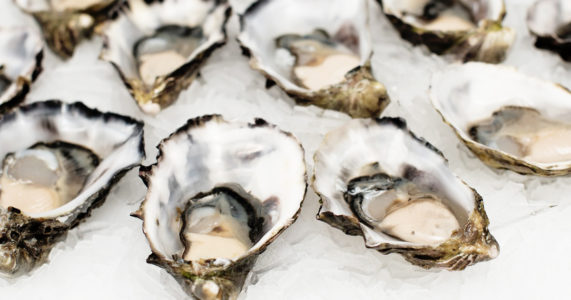 35th Anniversary Oyster Festival in Oyster Bay, Long Island